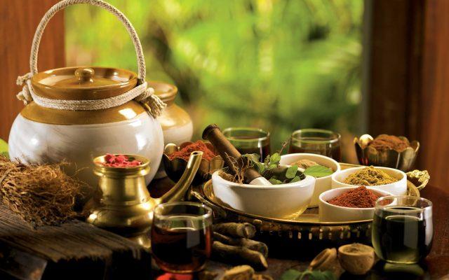 Vedic Wellness